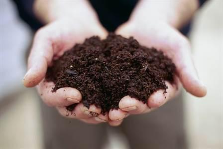 Cum sa pregatiti solul de gradina toamna pentru anul urmator